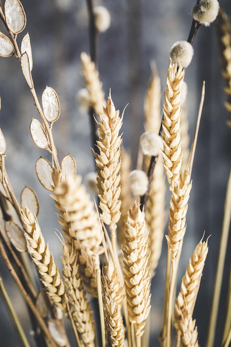 Déco épi de blé